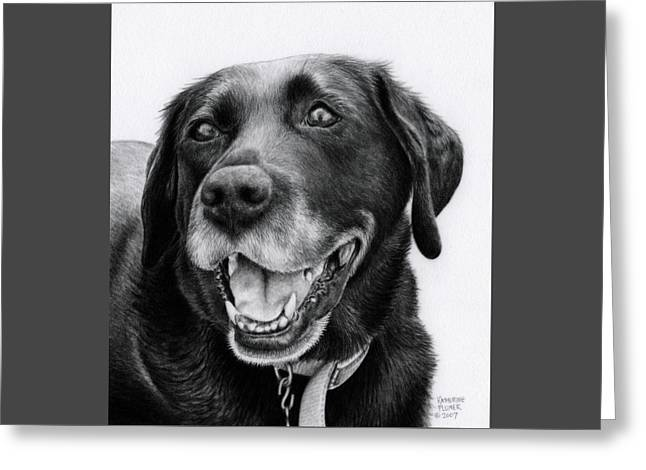 Lab Drawings Greeting Cards - Jessie Greeting Card by Katherine Plumer