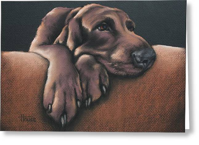 Hound Pastels Greeting Cards - Jethro Greeting Card by Cynthia House