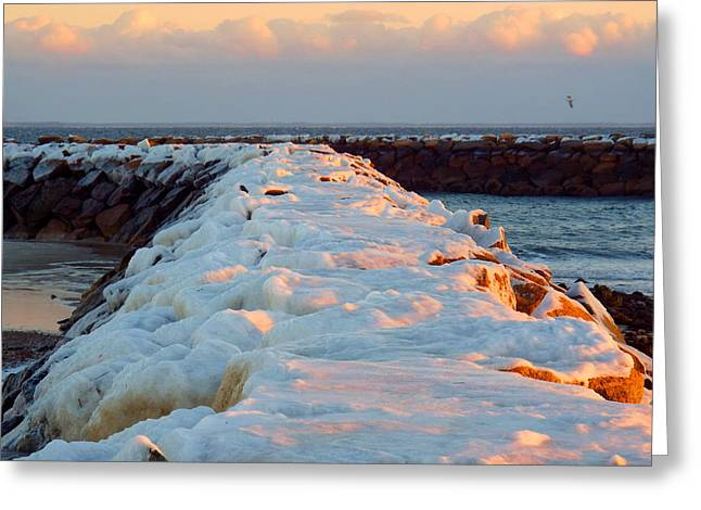 Harbor Sesuit Harbor Greeting Cards - Jetties in January Greeting Card by Dianne Cowen