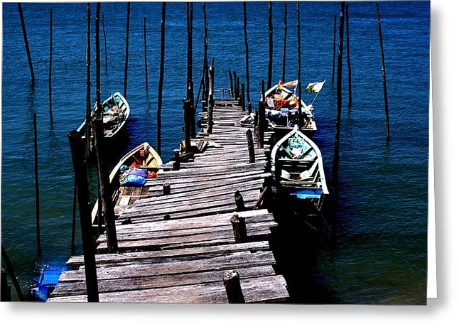 Wodden Jetty Plank. II Greeting Card by Ali Mohamad