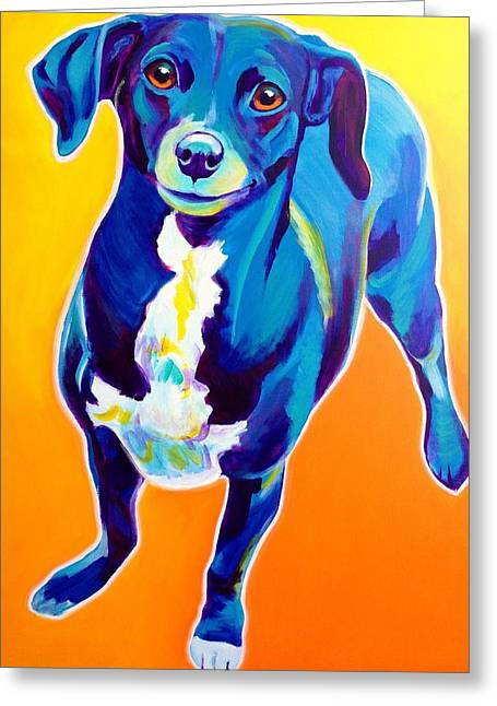 Chihuahua Artwork Greeting Cards - Chiweenie - Jewels Greeting Card by Alicia VanNoy Call
