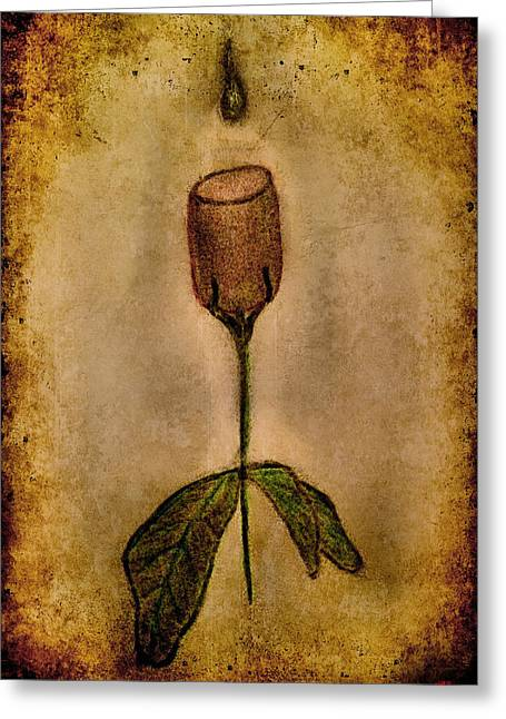 Wine-glass Drawings Greeting Cards - Jfx2014-069 Greeting Card by Emilio Arostegui
