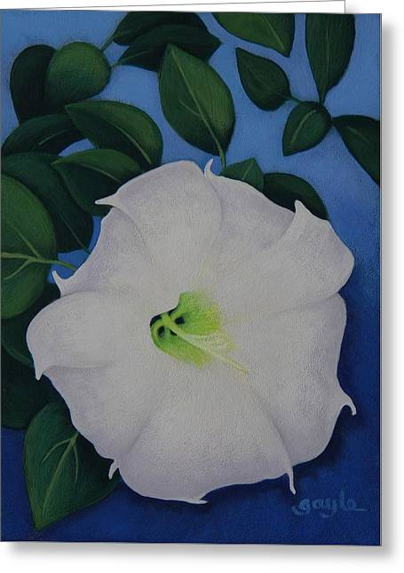 Jimson Weed Greeting Cards - Jimson Bloom Greeting Card by Gayle Faucette Wisbon