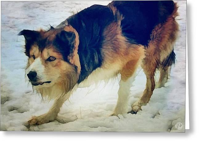 Working Dog Digital Greeting Cards - Joe Greeting Card by Gun Legler