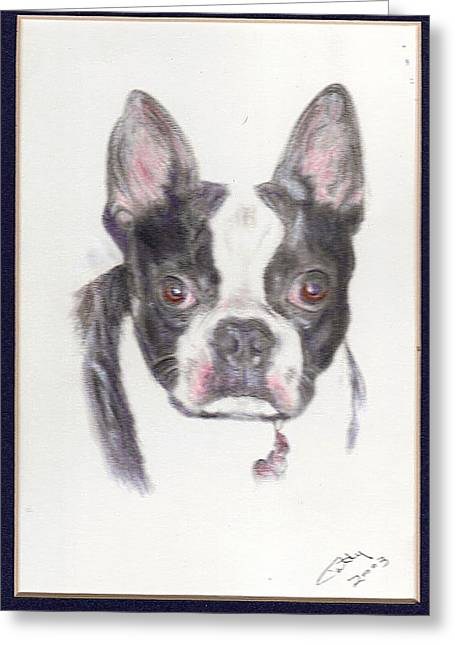 Pat Mchale Greeting Cards - Joey Greeting Card by Pat Mchale