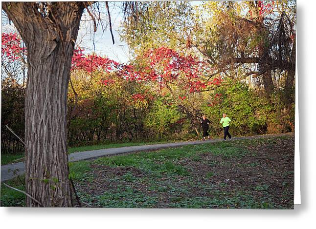 Joggers In Parkland In Autumn Greeting Card by Jim West