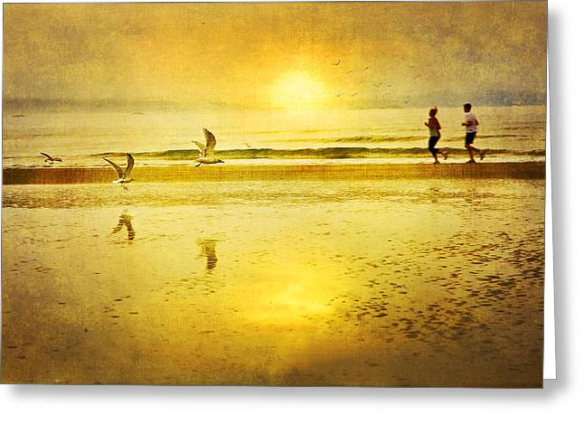 Canadian Photographer Photographs Greeting Cards - Jogging On Beach With Gulls Greeting Card by Theresa Tahara