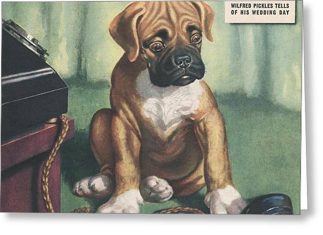 John Bull 1949 1940s Uk Dogs  Magazines Greeting Card by The Advertising Archives