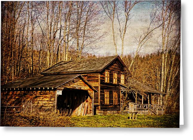 Roxbury Greeting Cards - John Burroughs Woodchuck Lodge Greeting Card by Pamela Phelps