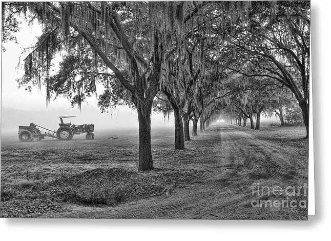 John Deer Tractor And The Avenue Of Oaks Greeting Card by Scott Hansen