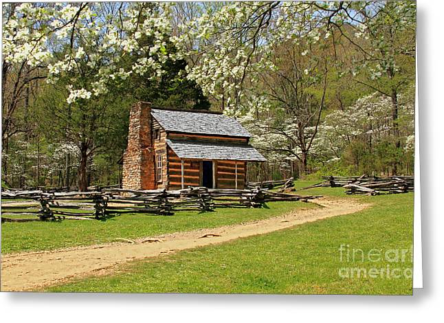 Geraldine Deboer Greeting Cards - John Olivers Cabin Greeting Card by Geraldine DeBoer