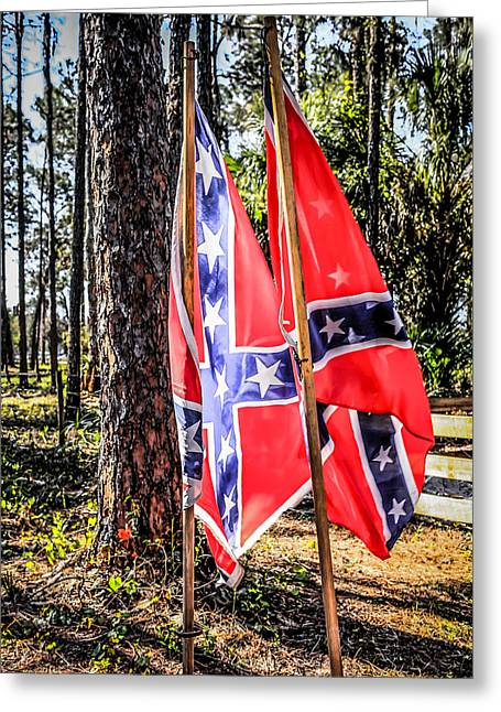 Confederate Flag Greeting Cards - Johnny Reb Flags Greeting Card by Chris Smith