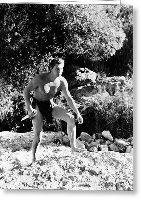 Find Greeting Cards - Johnny Weissmuller in Tarzan Finds a Son!  Greeting Card by Silver Screen