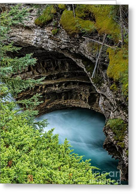 Banff Greeting Cards - Johnston Canyon Pool Banff Canadian Rockies Greeting Card by Edward Fielding