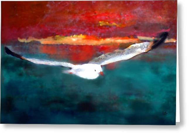Seabirds Greeting Cards - Jonathan Two Greeting Card by Marcello Cicchini