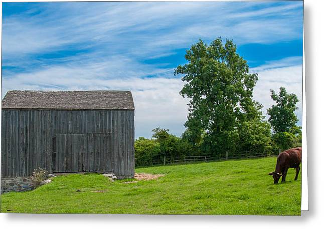 Farmlife Greeting Cards - Jones Farm 17811c Greeting Card by Guy Whiteley