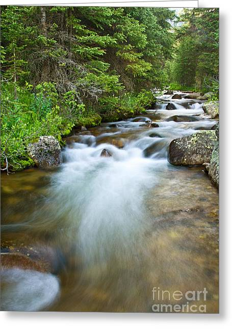 Babbling Greeting Cards - Jones Pass Mountain Stream Greeting Card by Benjamin Reed