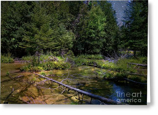 Jordan Headwaters in the Moonlight Greeting Card by MJ Olsen