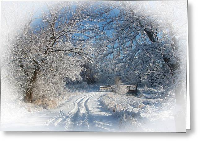 Journey Into Winter Greeting Card by Teresa Schomig