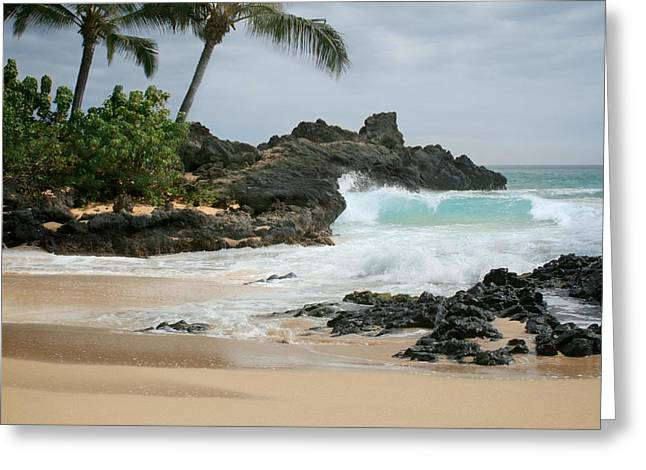 Ocean Art Photography Greeting Cards - Journey of Discovery  Greeting Card by Sharon Mau