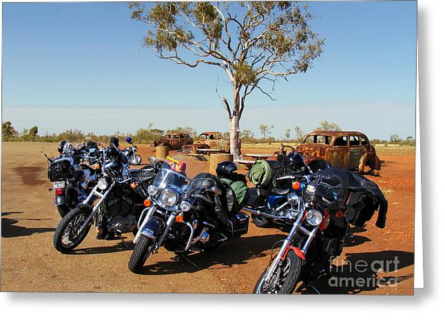 Journey To The Outback Greeting Card by Linda Lees