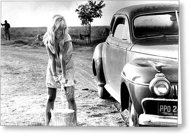 Cool Photographs Greeting Cards - Joy Harmon in Cool Hand Luke  Greeting Card by Silver Screen