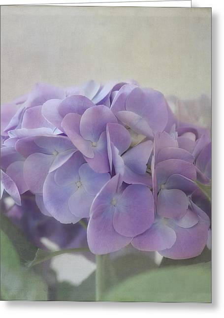Purple Hydrangeas Greeting Cards - Joy Is.... Greeting Card by Kim Hojnacki