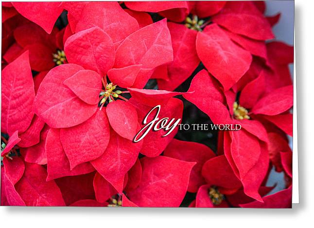 Joy To The World Greeting Cards - Joy to the World Greeting Card Greeting Card by Mary Timman
