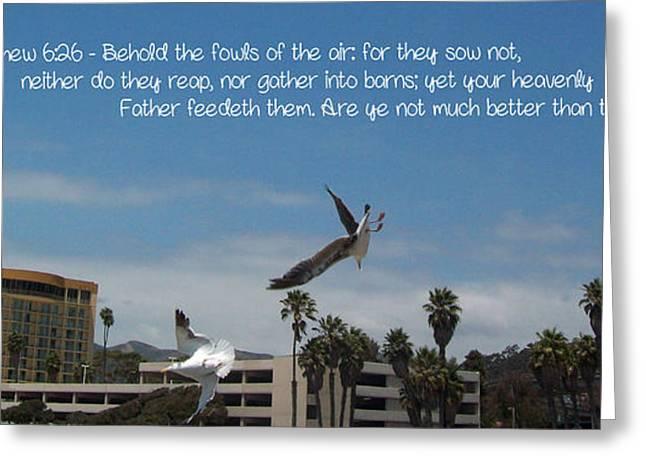 Flying Seagull Greeting Cards - Joyous Flight Greeting Card by Cindy Nunn