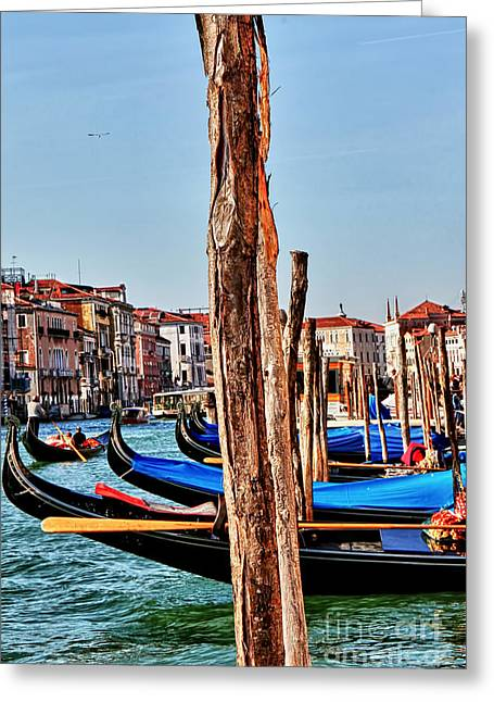 Toms Place Greeting Cards - Joyride-Venice Italy Greeting Card by Tom Prendergast