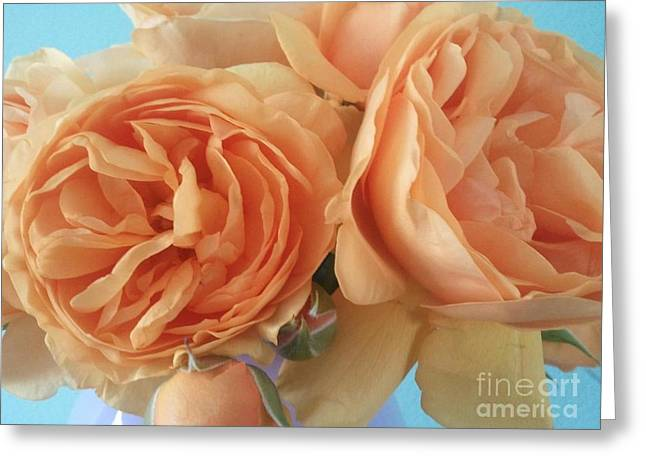 Daughter Gift Greeting Cards - Julia Child Roses Greeting Card by Christina Wysocki