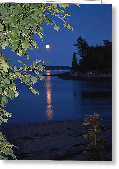 Moonrise Greeting Cards - July 2014 Supermoon Hulls Cove Maine Greeting Card by Lena Hatch