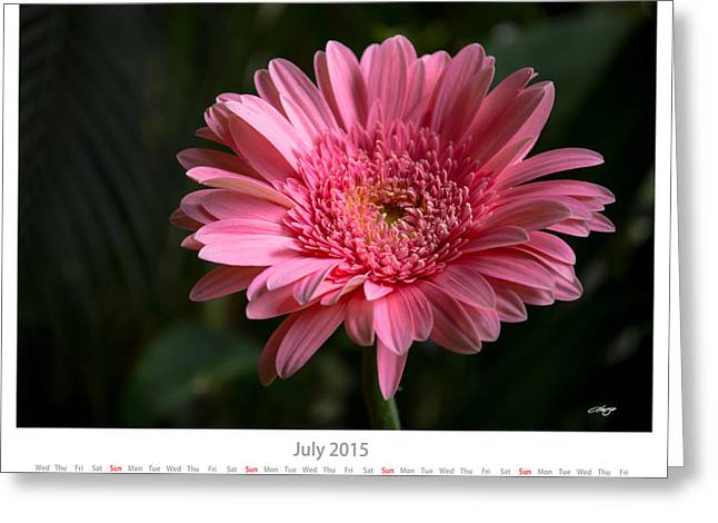 Monthly Calendars Greeting Cards - July 2015 Calendar Sheet Greeting Card by Alejandro Reyna