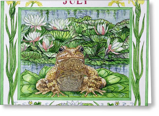 Frog Photographs Greeting Cards - July Wc On Paper Greeting Card by Catherine Bradbury