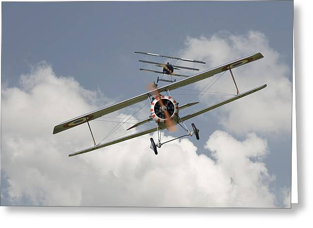 Triplane Greeting Cards - Jumped Greeting Card by Pat Speirs