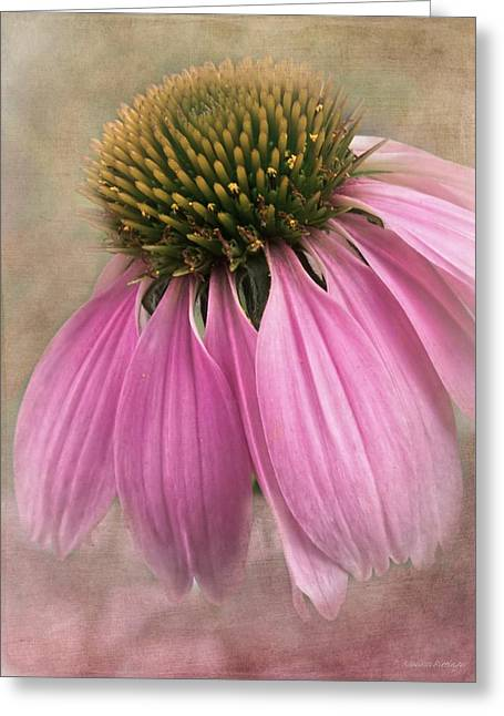 Artography Greeting Cards - June Coneflower Greeting Card by Melissa Bittinger