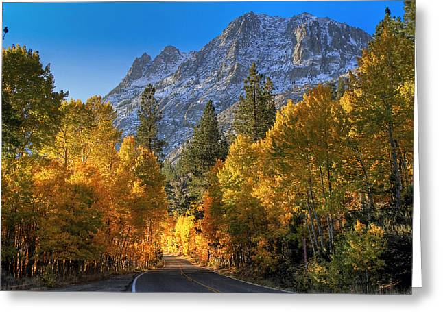 Canon 7d Greeting Cards - June Lake Loop Greeting Card by Donna Kennedy
