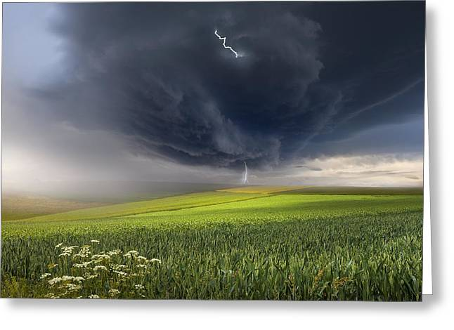 June Greeting Cards - June Storm Greeting Card by Franz Schumacher