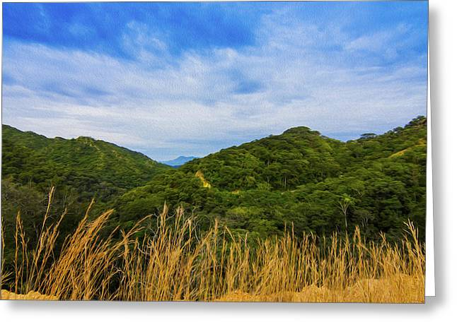 Summer Season Landscapes Greeting Cards - Jungle Greeting Card by Aged Pixel