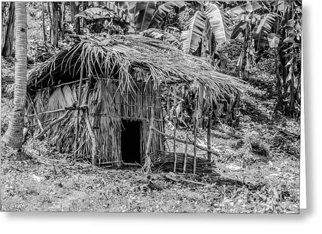 Lonesomeness Greeting Cards - Jungle Hut In A Tropical Rainforest - Black And White Greeting Card by Colin Utz