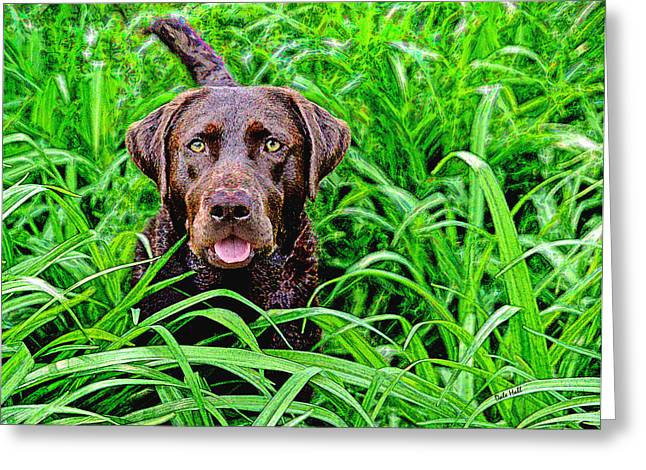 Chocolate Lab Digital Art Greeting Cards - Jungle Jewel Greeting Card by Dale Hall