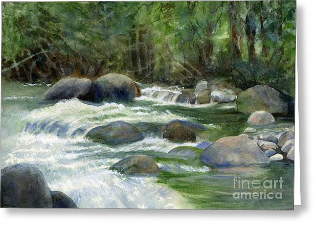 Rushing Water Greeting Cards - Jungle Stream Greeting Card by Sharon Freeman