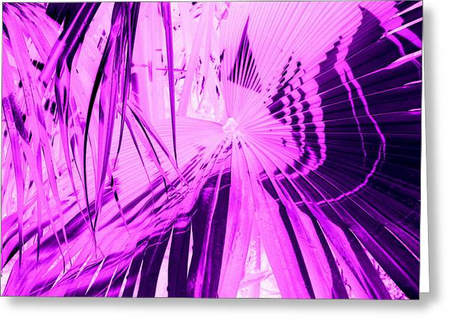 Purlple Greeting Cards - Jungle Vision Greeting Card by Mary Kosary