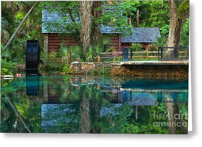 Spring Mill Greeting Cards - Juniper Springs Mill House Greeting Card by Adam Jewell