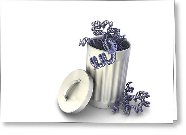 Thrown Away Greeting Cards - Junk DNA, conceptual image Greeting Card by Science Photo Library