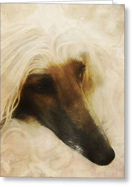 Afghan Hound Watercolor Greeting Cards - Juno Resting Greeting Card by Diane Chandler