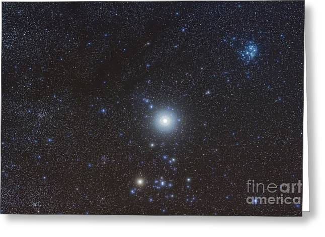 Jupiter In The Constellation Taurus Greeting Card by Alan Dyer