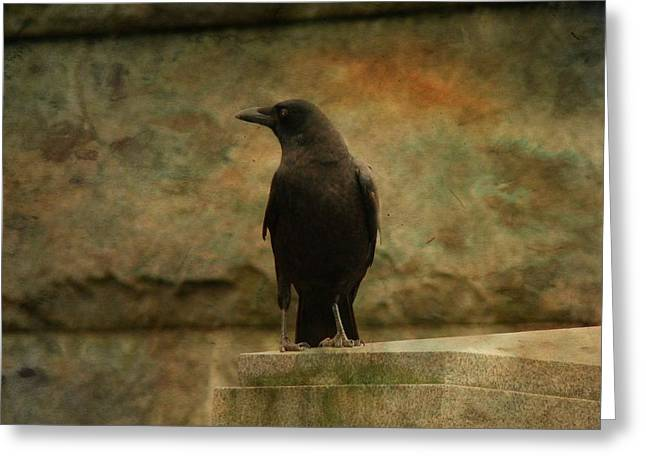 Crow Image Greeting Cards - Just A Blackbird  Greeting Card by Gothicolors Donna Snyder