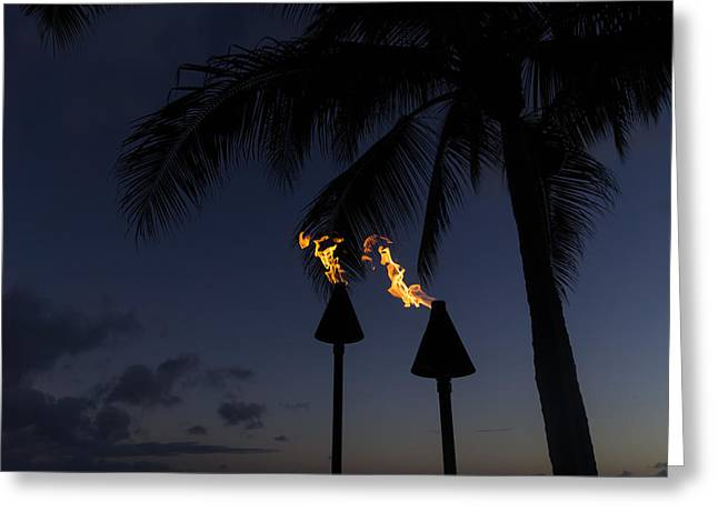 Night Lamp Greeting Cards - Just After Sunset the Beach Party is Starting Greeting Card by Georgia Mizuleva