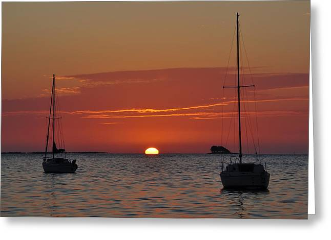 Sailboats In Harbor Digital Art Greeting Cards - Just Another Day in Paradise Greeting Card by Bill Cannon